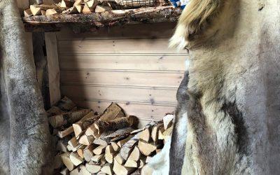 Wat is de allermooiste Lapland reis?